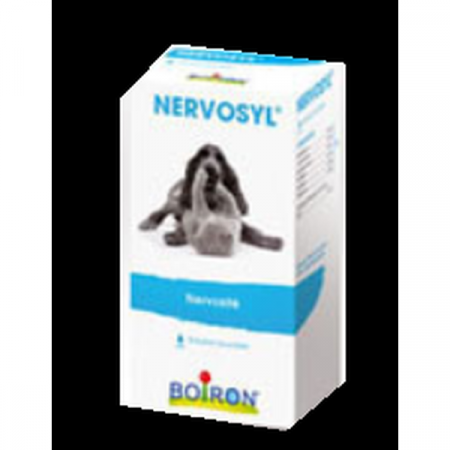 Epileptyl Solution Buvable Boiron 30 ml