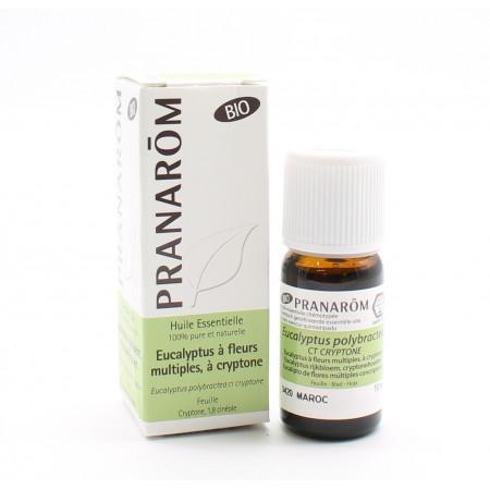 Pranarôm Bio Huile Essentielle Eucalyptus à Cryptone...