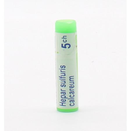 Boiron Hepar Sulfuris Calcareum 5ch Tube Unidose - Univers Pharmacie