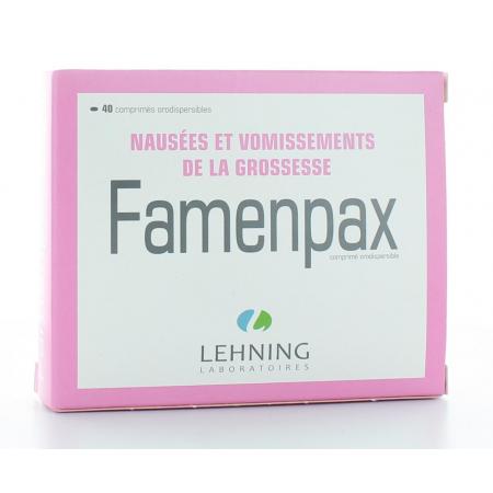 LEHNING FAMENPAX NAUSEES ET VOMISSEMENTS DE LA GROSSESSE 40 COMPRIMES