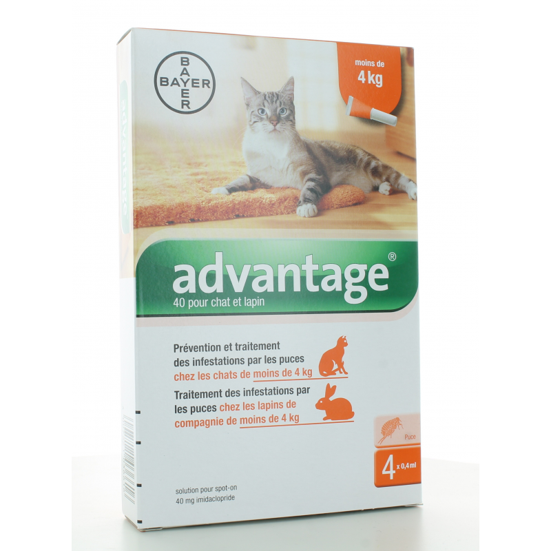 Advantage 40 Chat et Lapin 4 pipettes